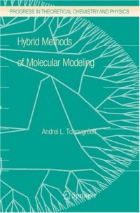 hybrid-methods-of-molecular-modeling-progress-in-theoretical-chemistry-and-physics