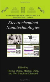 electrochemical-nanotechnologies-nanostructure-science-and-technology