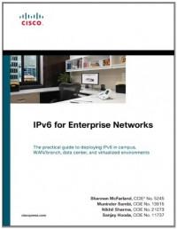 ipv6-for-enterprise-networks-networking-technology