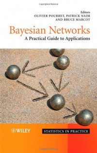 bayesian-networks-a-practical-guide-to-applications-statistics-in-practice