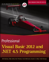 professional-visual-basic-2012-and-net-4-5-programming