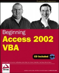 beginning-access-2002-vba-programmer-to-programmer