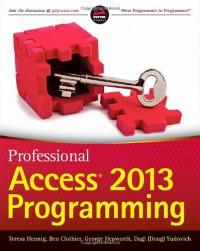 professional-access-2013-programming