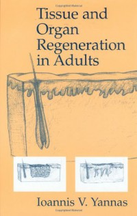 tissue-and-organ-regeneration-in-adults