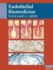 endothelial-biomedicine