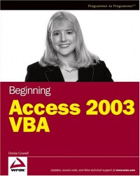beginning-access-2003-vba-programmer-to-programmer
